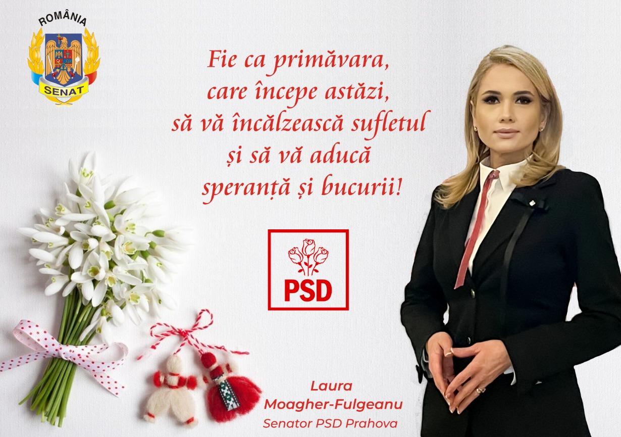 echipa-psd-prahova-parlamentare
